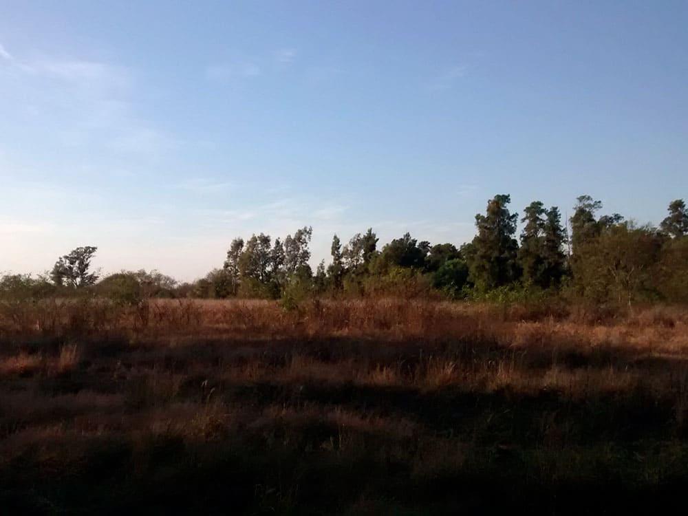 Proyecto-Planta-Solar-Fotovoltaica-en-Tostado-Provincia-de-Santa-Fe-01